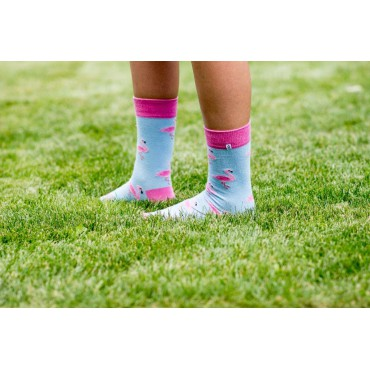 Funny Socks with pink Flamingo on blue background 4lck.com