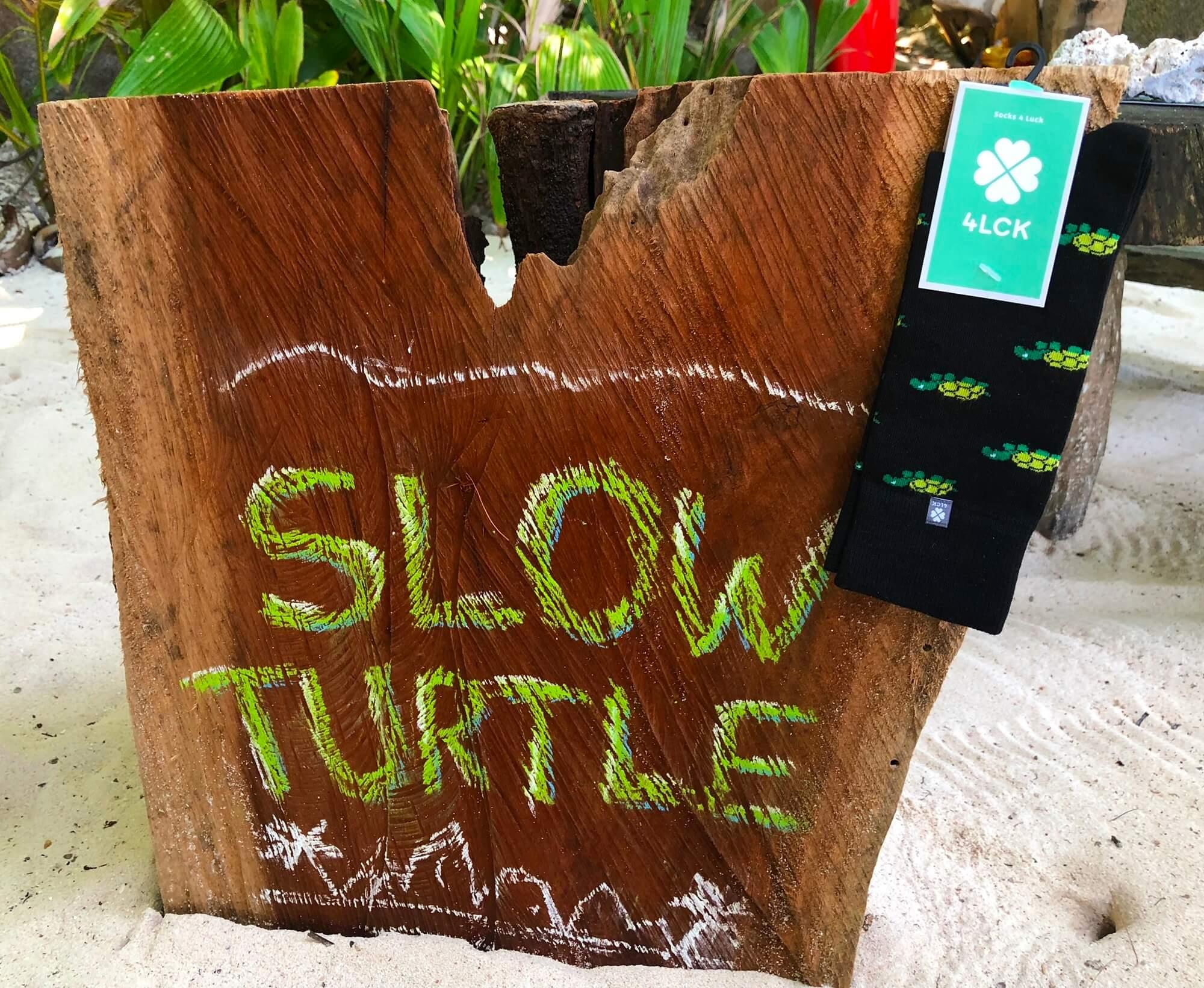 czarne skarpetki w żółwie turtle socks 4lck